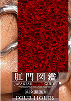 Japanese Anal Guide